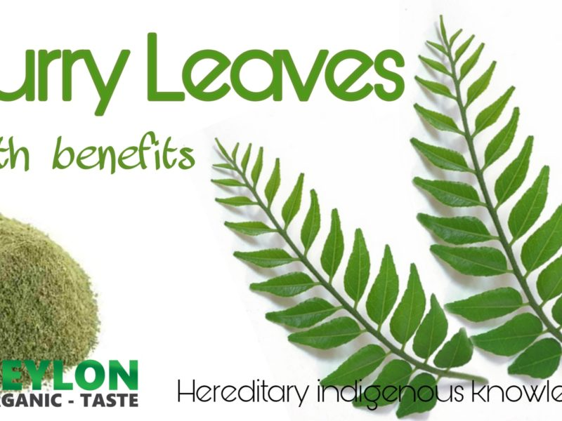 10 Natural Benefits of Curry Leaves