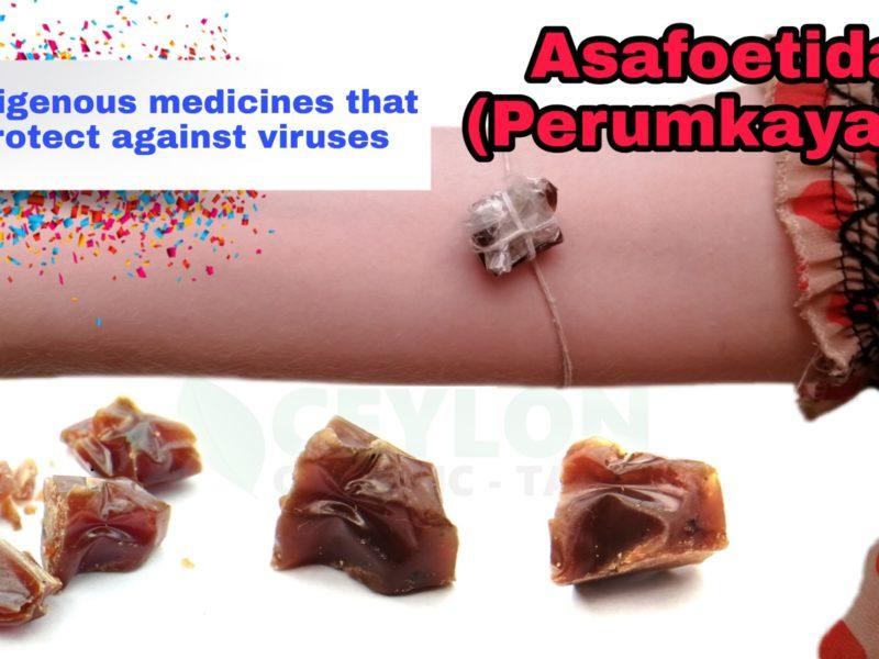Indigenous Medicines That Protect Against Viruses – Asafoetida Perumkayam