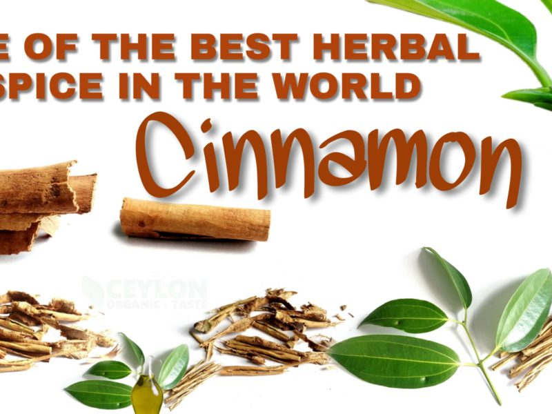 Cinnamon – One of the best herbal spice in the world