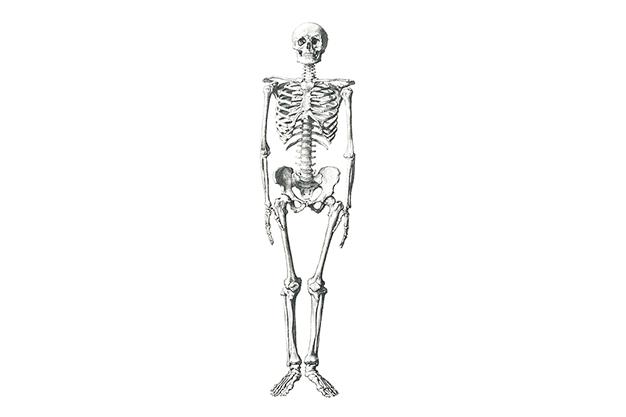 Hereditary Orthopedic Medicine