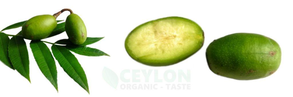 10 Benefits of Spondias dulcis Ambarella - Medicinal Fruit