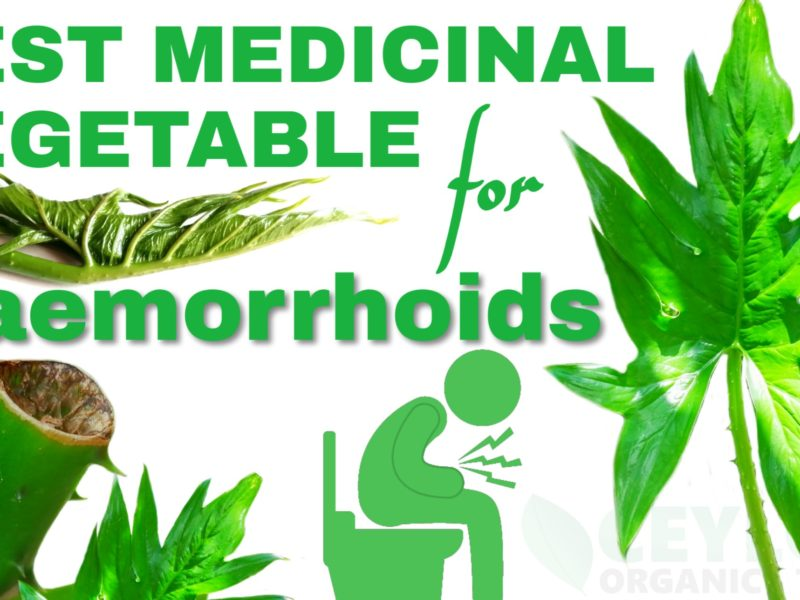 Best Medicinal Vegetable for haemorrhoids