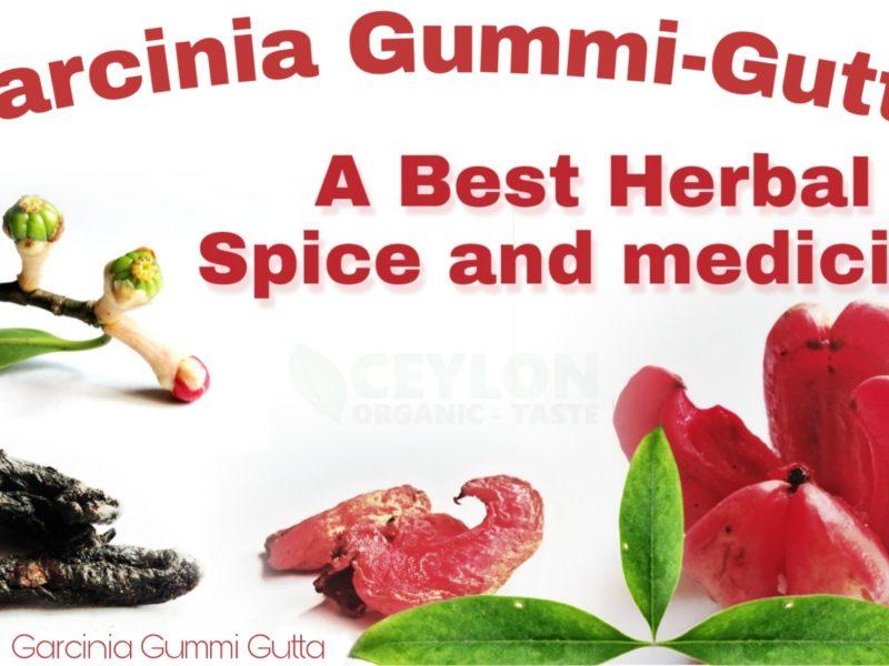 A Best Medicine and Spice – Garcinia Gummi Gutta Goraka