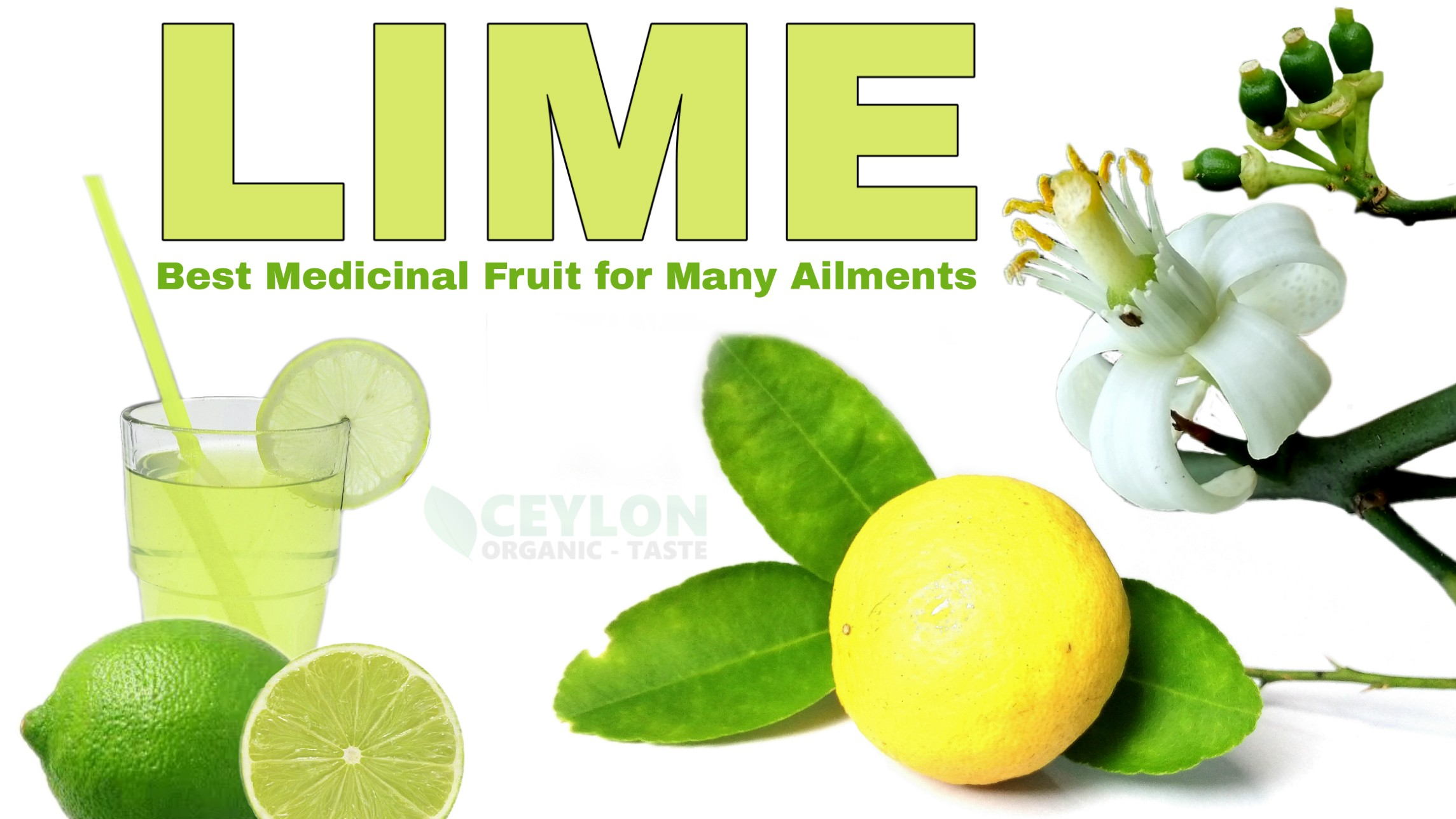 Lime – Best Medicinal Fruit for Many Ailments