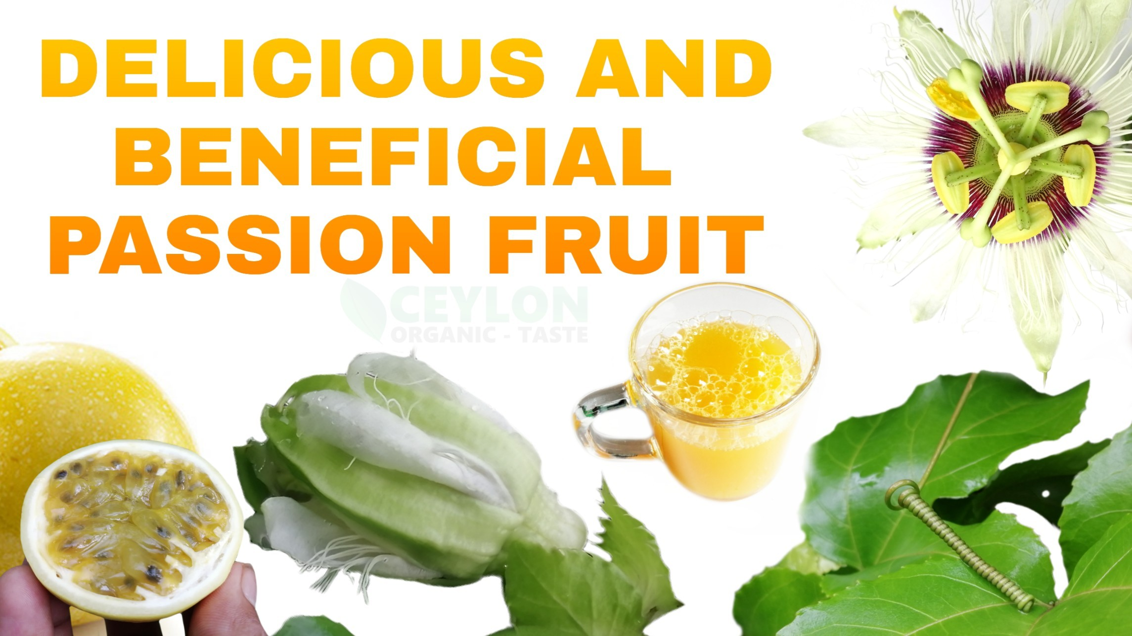 Delicious and beneficial Passion fruit