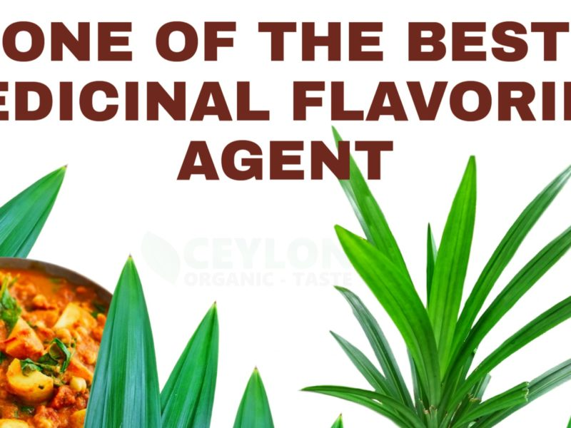 One of the best medicinal flavouring agent – Pandan