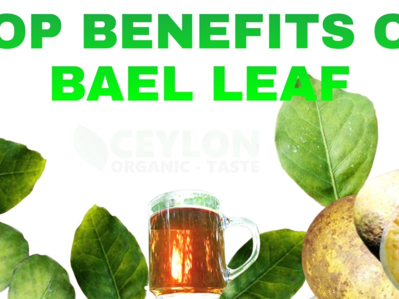 Top Benefits of Bael leaf